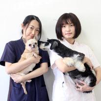 YIC NEWS9→10月号「在校生による教員紹介」