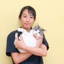 YIC NEWS 1月号!『YIC各校の教員紹介』