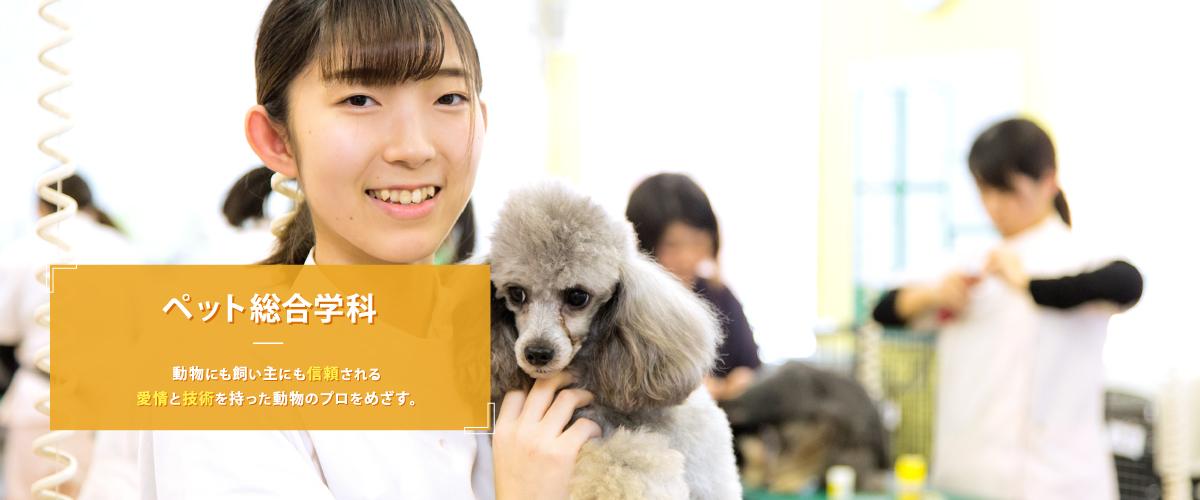 つくば国際ペット専門学校 – わんわんランドグルー …
