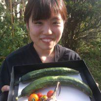 夏を味わう♪ 野菜!実り!収穫!!